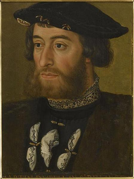 portrait of Guillaume du Bellay
